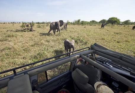 sunsafaris-9-serengeti-north.jpg