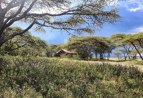 sunsafaris-6-serengeti-south.jpg