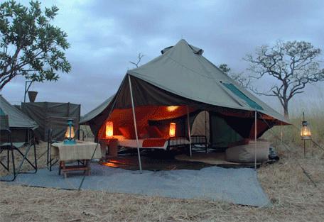 456a_wayo-green-camp.jpg