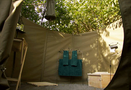 456d_wayo-green-camp.jpg