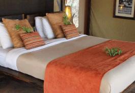 456a_little-olivers-camp_bedroom.jpg