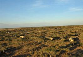 456a_tarangire-camp_aerial-view.jpg