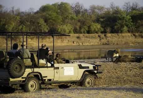 sunsafaris-1-zambia.jpg