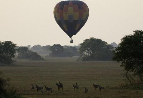 roan-balloon-wilderness.jpg
