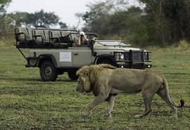 sunsafaris-1-busanga-bush-camp.jpg