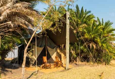 sunsafaris-busanga-plains-456-6.jpg
