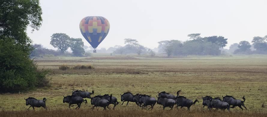 sunsafaris-1-kafue-safari.jpg