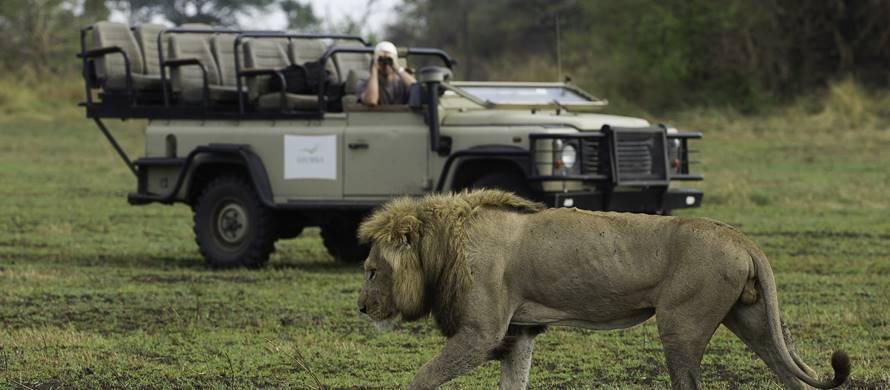 sunsafaris-2-kafue-safari.jpg