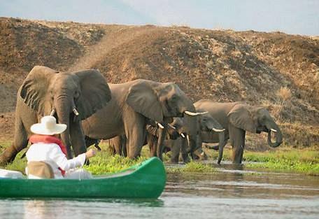 sunsafaris-1-lower-zambezi-national-park-safari.jpg
