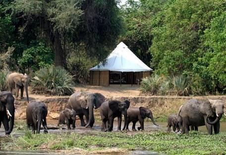 sunsafaris-5-lower-zambezi-national-park-safari.jpg