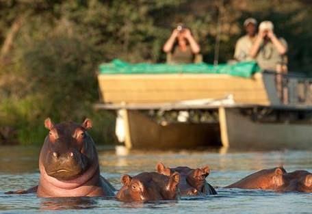 sunsafaris-6-lower-zambezi-national-park-safari.jpg