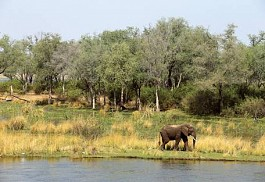 sunsafaris-1-amanzi-lodge.jpg