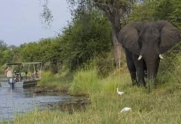 sunsafaris-1-baines-river-camp.jpg