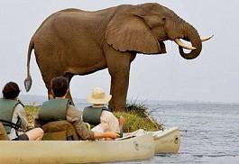 sunsafaris-1-chiawa-camp.jpg