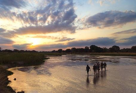 sunsafaris-1-south-luangwa-national-park.jpg