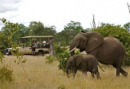 sunsafaris-1-sanctuary-Chichele-presidential-lodge.jpg