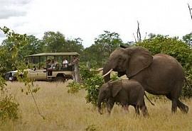 sunsafaris-1-sanctuary-Chichele-presidential-lodge.jpg