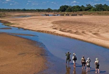 walking_riverbed.jpg