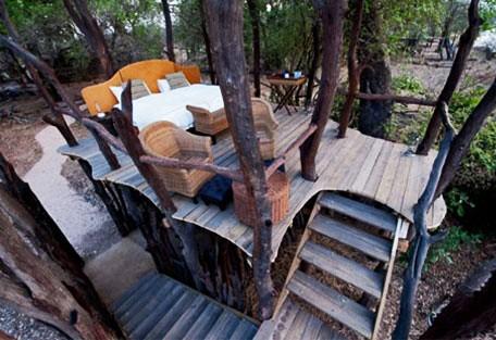 q06-treehouse.jpg