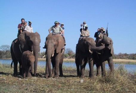 elephant-back-safari.jpg