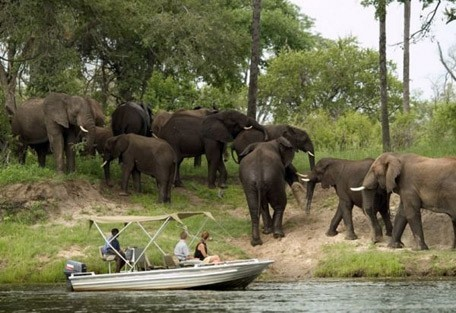 elephant-viewing-from-boat.jpg