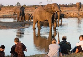sunsafaris-1-hwange-national-park-zimbabwe.jpg
