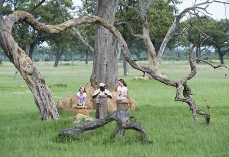 sunsafaris-7-hwange-national-park-zimbabwe.jpg
