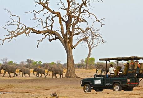sunsafaris-11-camelthorn-lodge.jpg