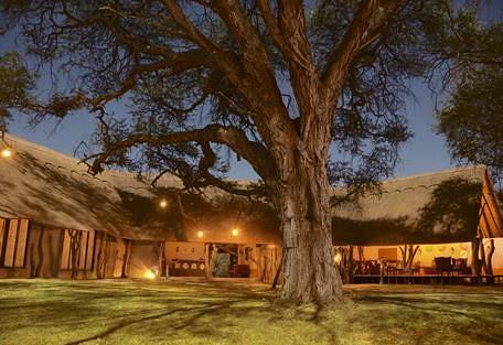 sunsafaris-7-camelthorn-lodge.jpg