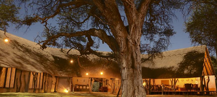 sunsafaris-1-camelthorn-lodge.jpg