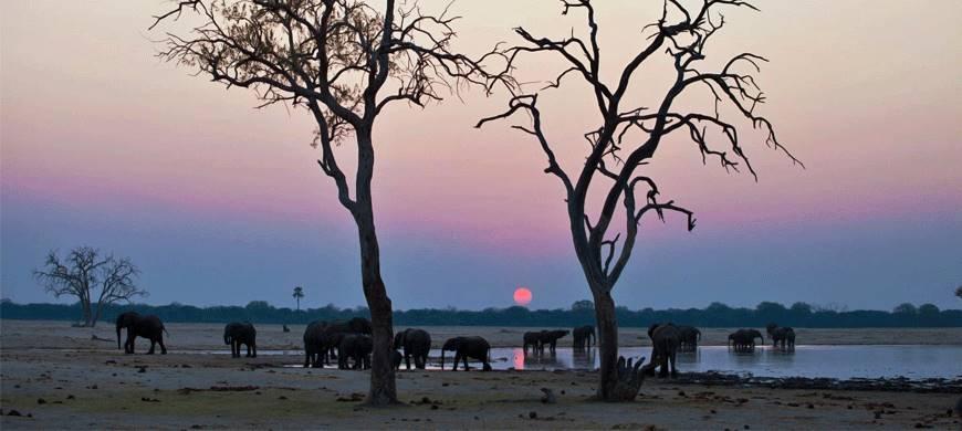 sunsafaris-2-camelthorn-lodge.jpg
