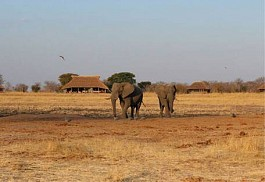 sunsafaris-1-camp-hwange.jpg