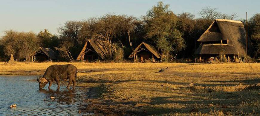sunsafaris-1-hwange-national-park.jpg