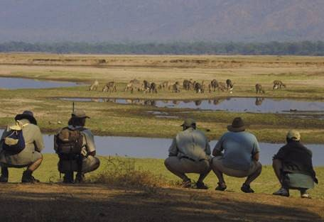 sunsafaris-3-mana-pools.jpg