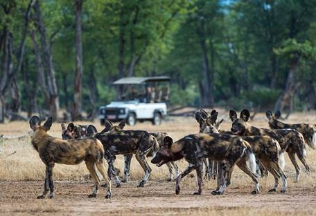 sunsafaris-12-rukomechi-camp.jpg