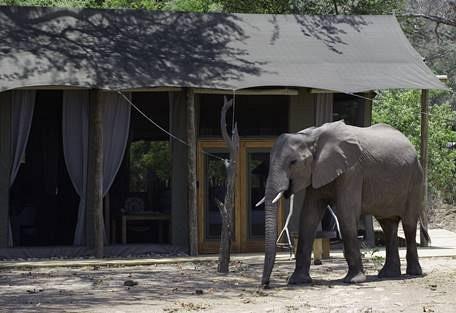 sunsafaris-3-rukomechi-camp.jpg