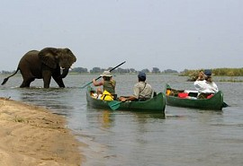 sunsafaris-1-mana-canoe-safari.jpg