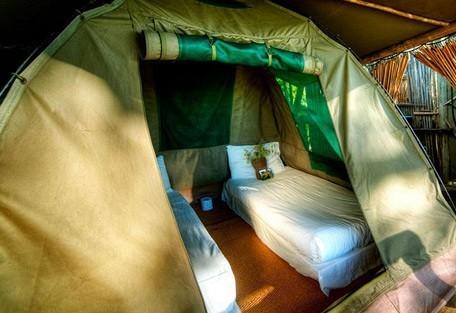 456-2-oddballs-tent-inside.jpg