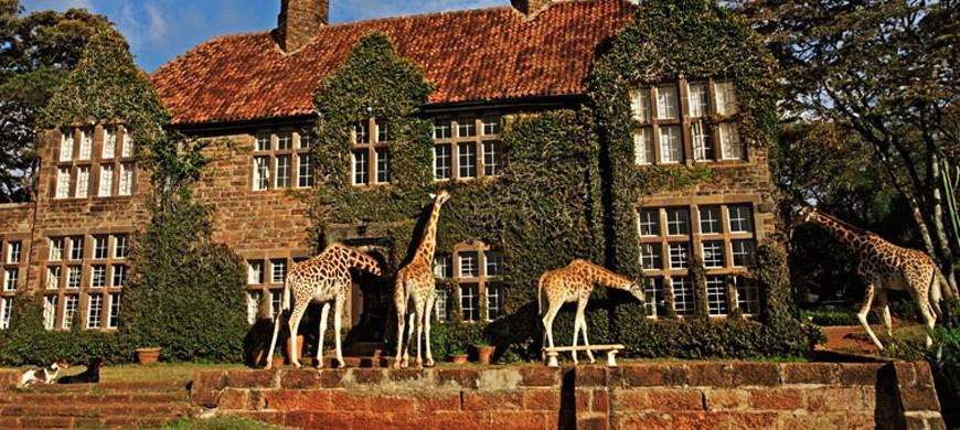 giraffemanor.jpg