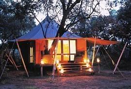 456-1-ngala-tented-camp.jpg