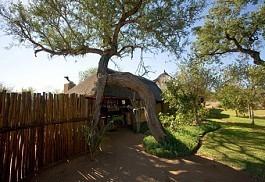 456-1-africaonfoot-entrance.jpg