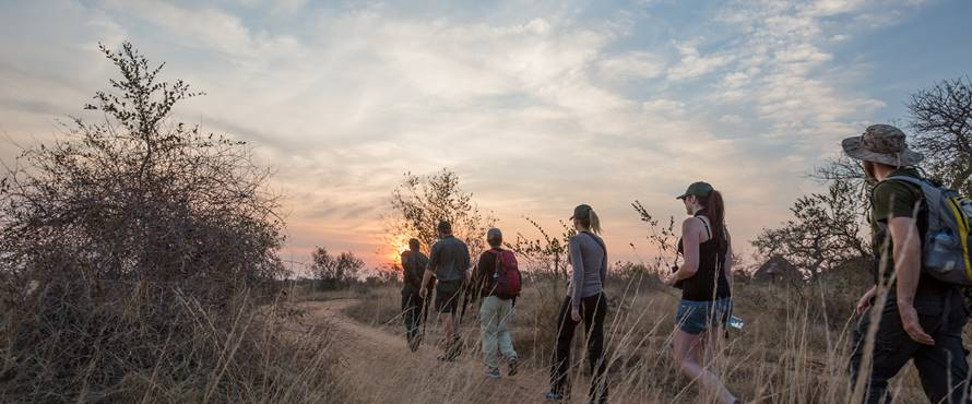 kruger-walking-safari-1-sun-safaris.jpg