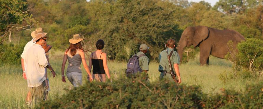 kruger-walking-safari-2-sun-safaris.jpg