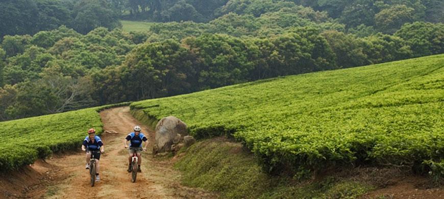 870_chawani_cycling.jpg