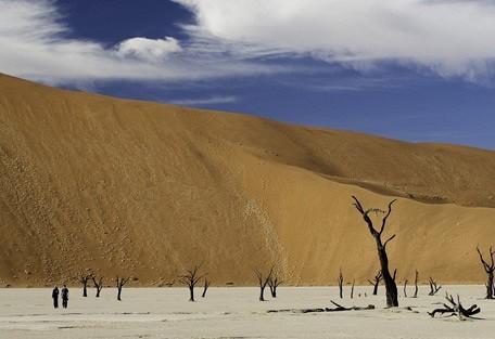 scenic-dunes.jpg