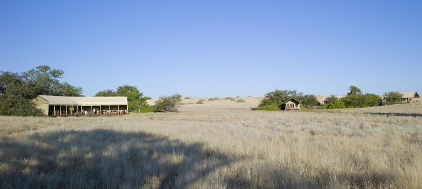 1-desert-rhino-camp.jpg