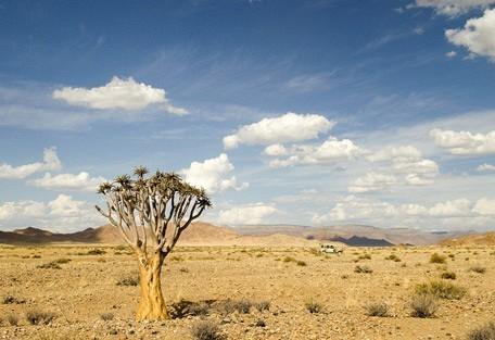 scenic-wilderness2.jpg