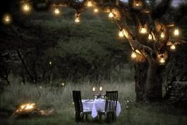 01-dinner-under-the-sausage-tree.jpg
