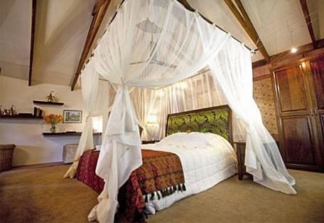 456_plantation-suites-interi.jpg