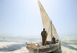 sunsafaris-1-magical-migration-and-beach-tour-of-tanzania.jpg